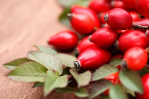 Rosehips are used to protect health in many ways. (Photo: Cecilia Bajic/Getty Images)